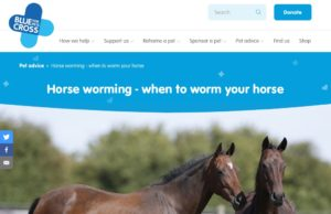 Article from Blue Cross on horse worming